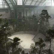 Une forêt dans le Grand Palais, défilé chanel, cheffe de projet, atelier François Devineau, 2013/2014.