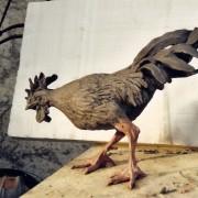 Coq pour expo Bob Wilson