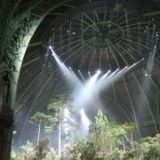Une forêt dans le Grand Palais, défilé Chanel